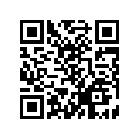 书虫小说3G书城下载