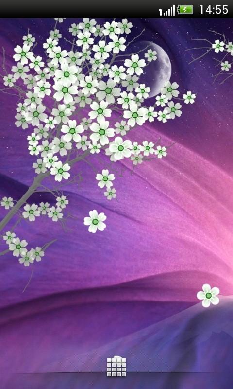 樱花动态壁纸 高清版