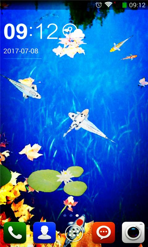 锦鲤荷塘动态壁纸-应用截图