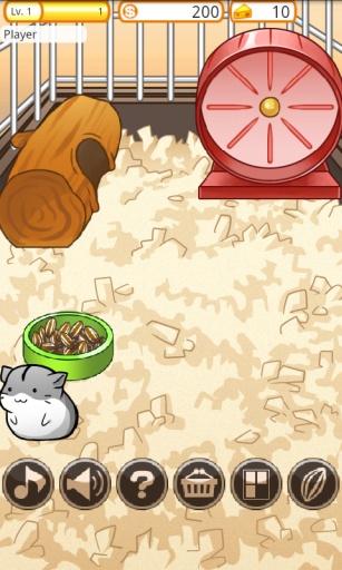 仓鼠的日常